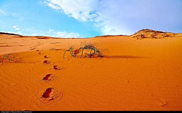 """Desert"" Imagen Creative Commons de Moyan Brenn en FlickR."